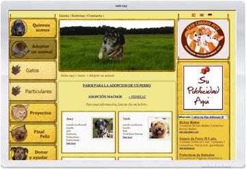 Paginas web para sociedades e asociaciones